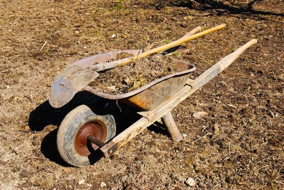 wheelbarrow_web