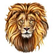 aslan_featured