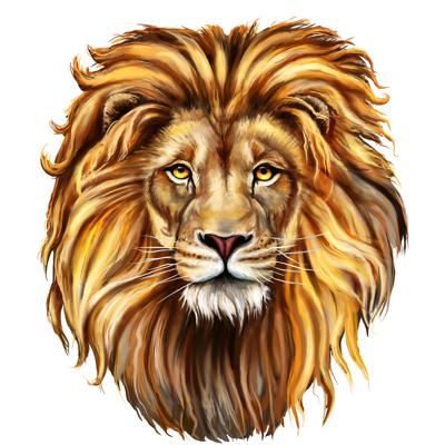 aslan_web